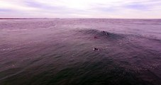 The Phantom snaking waves at Town Beach Port Macquarie