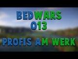 Let's Play Minecraft Bedwars #013 - Profis am Werk - [1080p] [GERMAN/DEUTSCH]