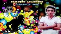 Miley Cyrus - Wrecking Ball (Tahir Haktan Remix)