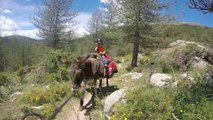 Corse secrète avec un âne - rando famille