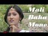 Superhit Santali Video Song : MALI BAHA MONE // Mali Baha Mone - YouTube