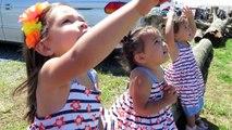 Petites filles vs Cerf-volant