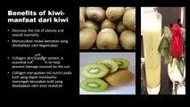 BENEFITS OF KIWI - MANFAAT BUAH KIWI