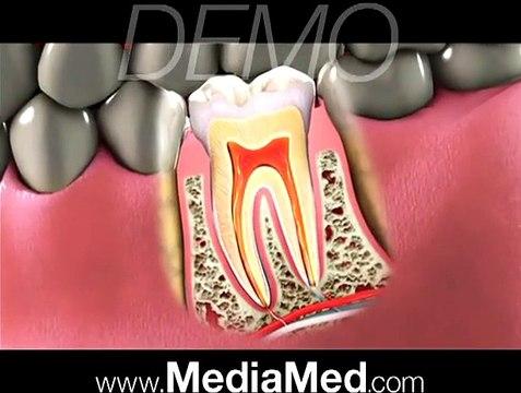 Great Dentist Video