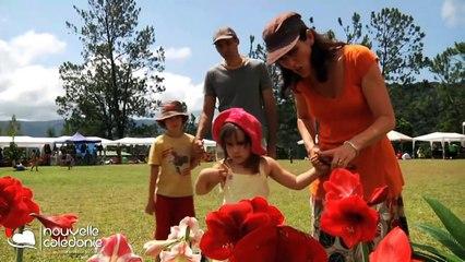 Nouvelle Calédonie - www.envie-de-voyages.com