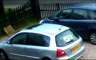 bird attacking windscreen wipers at about 5:35AM