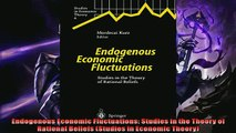 For you  Endogenous Economic Fluctuations Studies in the Theory of Rational Beliefs Studies in
