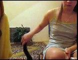 Cute Kitten Demands More Petting!