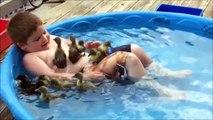 Il transforme sa piscine en marre aux canards. Trop mignon