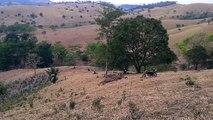 www.faroisecia.com.br - Trilha em Cerejeiras/RO 28 set 2013   pt 2