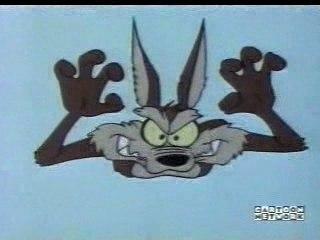 Bip-bip et Vil Coyote - Chaser On The Rocks