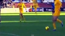 Luca Toni   Hellas Verona   2013-2014   ALL 20 SERIE A GOALS