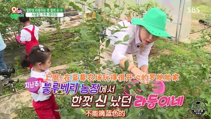 Oh My Baby 20160702 Ep120 Part 2