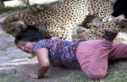هجمات, الحيوانات, البرية - اخطر هجمات على الا