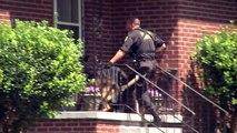 Un chien policier est tué en fonction, ce que les policiers font pour lui rendre hommage vous fera pleurer!