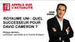 Royaume uni : quel successeur pour David Cameron ? Les réponses de Philippe Marlière.