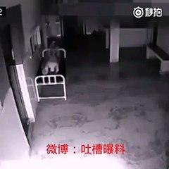 Une caméra filme une femme mourir et son âme sortir de son corps