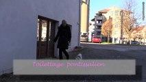 TOILETTAGE PONTISSALIEN à Pontarlier dans le département du Doubs 25