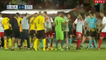 Massive Brawl Erupts In Champions League Qualification Between FC Alashkert And FC Santa Coloma