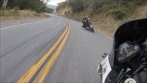 Ces motards roulent à fond sur une route de montagne en Harley