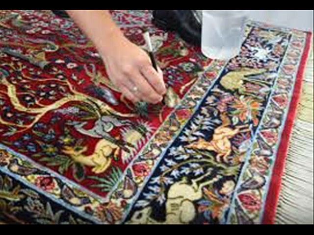 Denver Carpet Cleaning Services