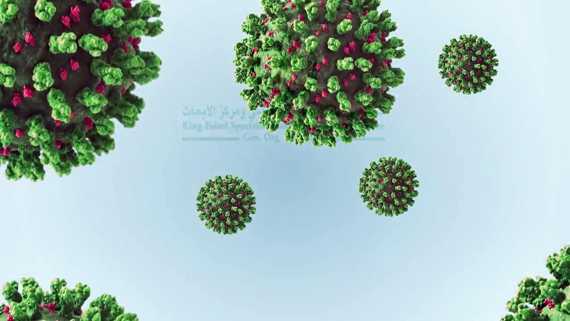 فيروس كورونا الجديد (2)