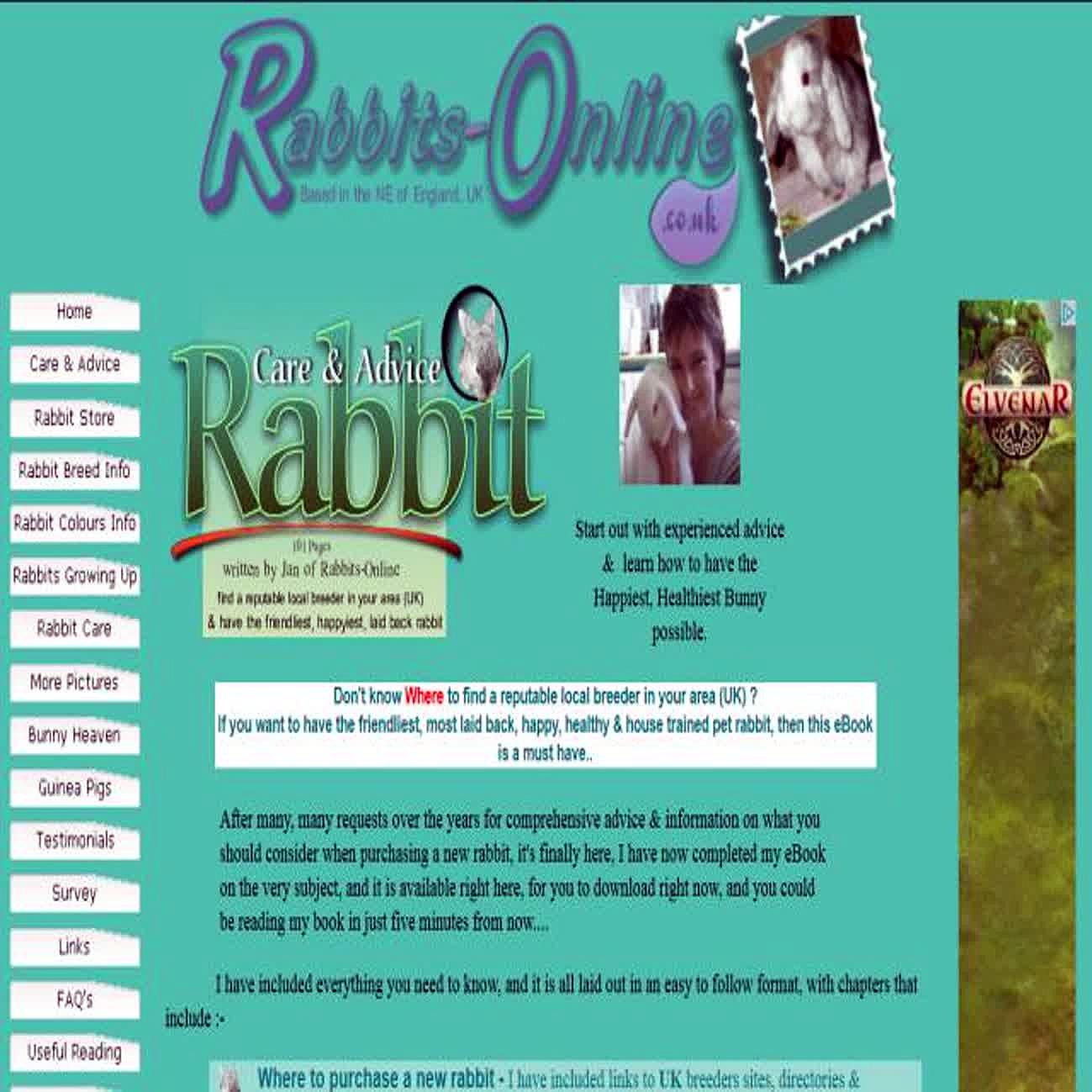 Rabbits-online