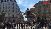 Nantes: une araignée géante se balade dans les rues de la ville