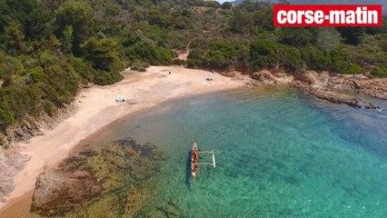 VIDEO. Reprise des activités pour le Capo Surf Club