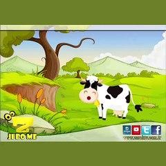 Zarok TV - Çêlek