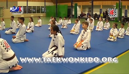 Stage Taekwonkido aux Pays-Bas - janvier 2016