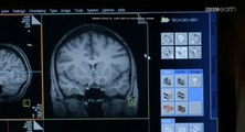 BBC horizon Какого пола твой мозг? / Is Your Brain Male Or Female? (2014) HD1080p