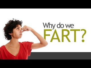 Why Do We Fart?