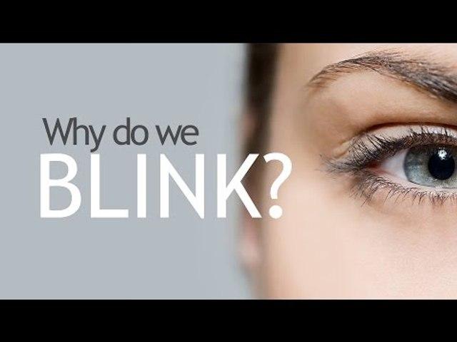Why Do We Blink?