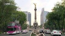 México sembará millones de árboles para combatir contaminación