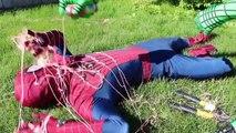 Spiderman and friends | Arkham Knight against Darth Vader vs. Blue Spider-Man vs. Star Wars Darth Maul