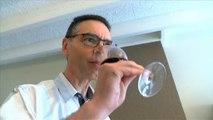 Les clefs de la dégustation : Comment apprécier le vin ?