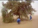 Ballade ( Mali-mai 2007)