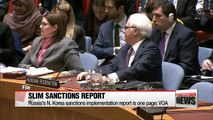 Russia's N. Korea sanctions implementation report is one page: VOA