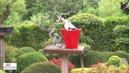 Japanese Garden Artcane in France