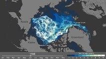 Движение льдов Арктики за 27 лет показали за минуту