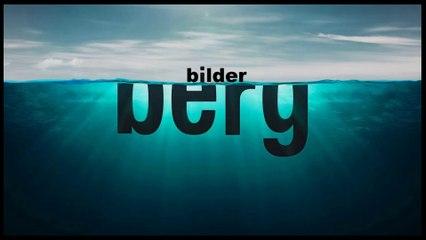 (Quelques) Leaders du Nouvel Ordre Mondial - Les participants CV (V.courte) - Conférence Bilderberg 2016