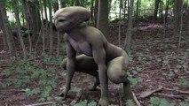 Documentaire ovni 2016 - Les visiteurs - présence des extraterrestres sur terre - en français