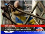 Vizela - RTP, 10 anos de Concelho