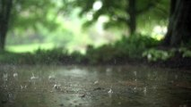 Rain drops captured in Slow Motion