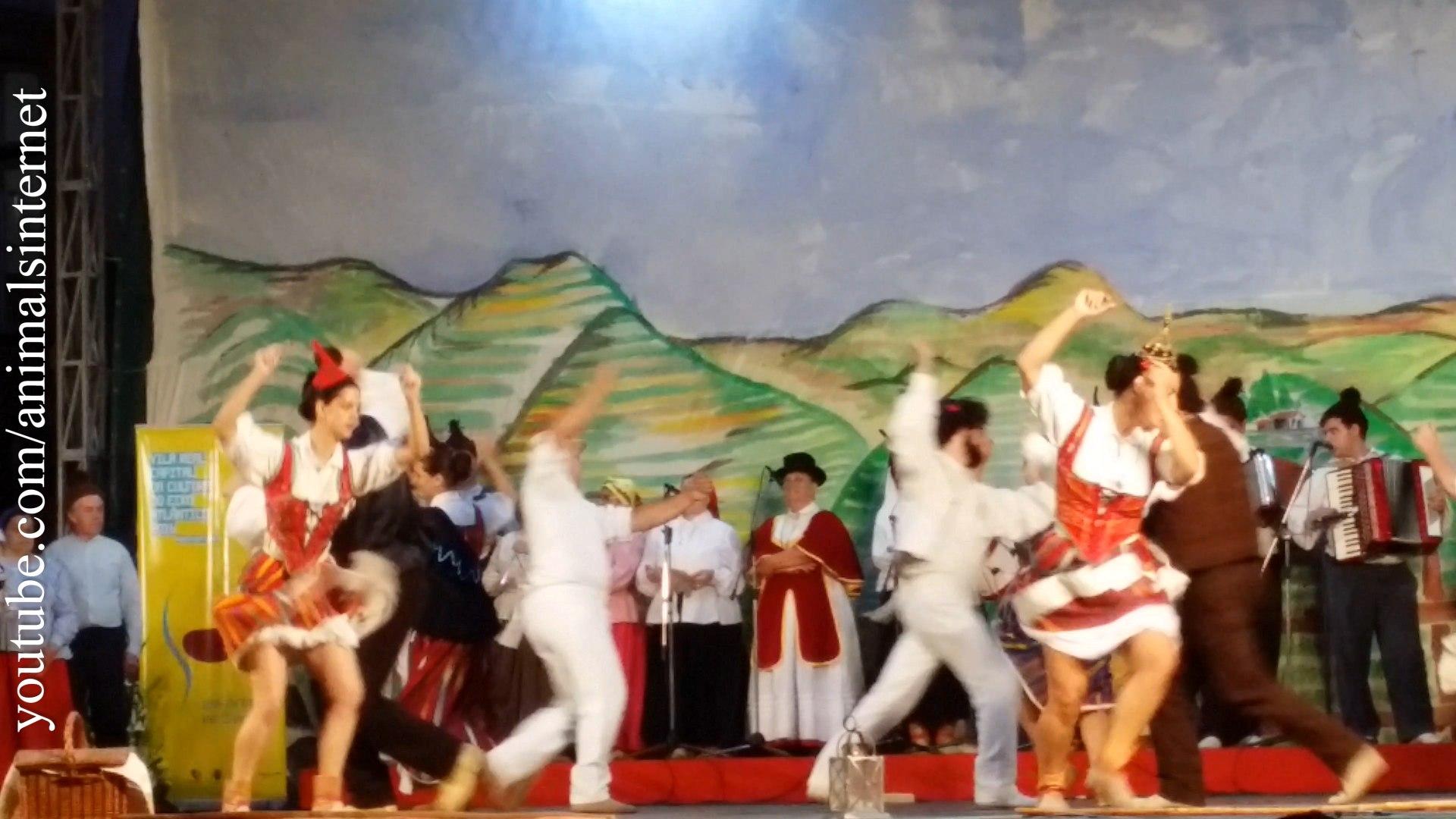 Meninas lindas e sensuais cantando dançando | Sexy beautiful girls singing dancing | 4k UHD 2160p