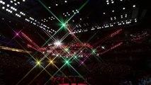 UFC ●  MIDDLEWEIGHT ●  TOP MMA ● MMA UFC MIX FIGHT ● RONALDO SOUZA VS VITOR BELFORT