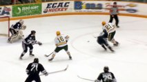 Clarkson Hockey - Knights 1 - Yale 0 - Jan. 24, 2015