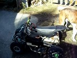 PocketBike mini atv.diy electric 39 kmh pushing 48 volts into a 24 volt motor