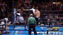 Deontay Wilder vs Chris Arreola Full Fight 17-07-2016 HD